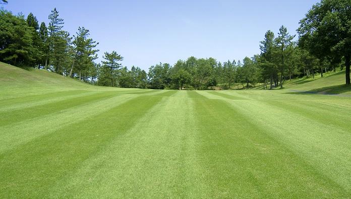 ゴルフ上達への5ステップ